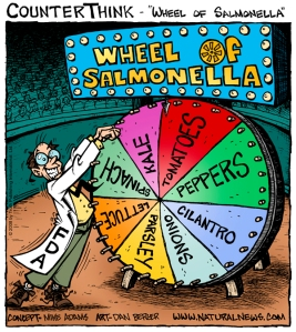 wheel-of-salmonella_6001