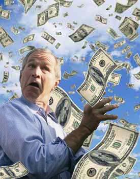 moneybush